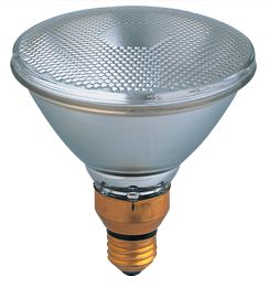 PAR38 SPOT LIGHT  68 Watt 130 Volt packed 12