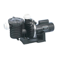 "STA-RITE MAX-E-PRO POOL PUMP 2HP PUMP 230V 2"" INLET/OUTLET"