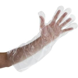 """ELBOW LENGTH EXTRA LONG POLYETHYLENE GLOVES Paceked 100, 21.5"""" in length"""